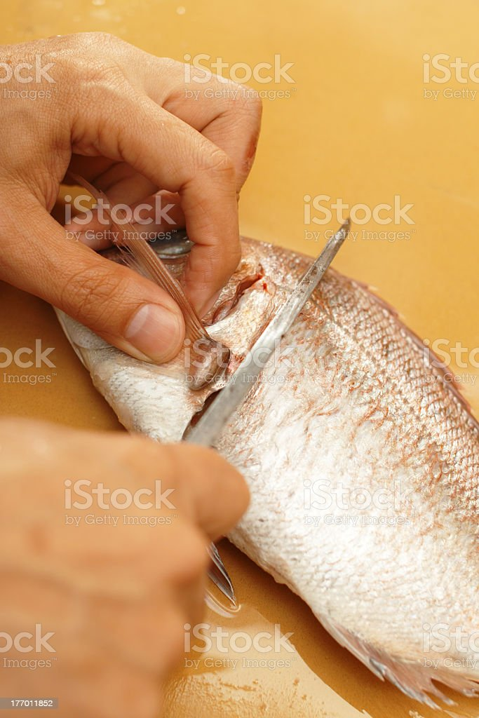 cook the fish 1 royalty-free stock photo
