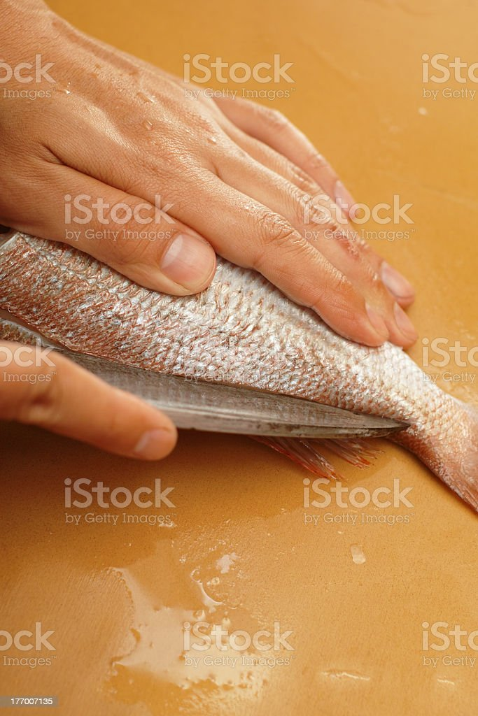 cook the fish 4 royalty-free stock photo
