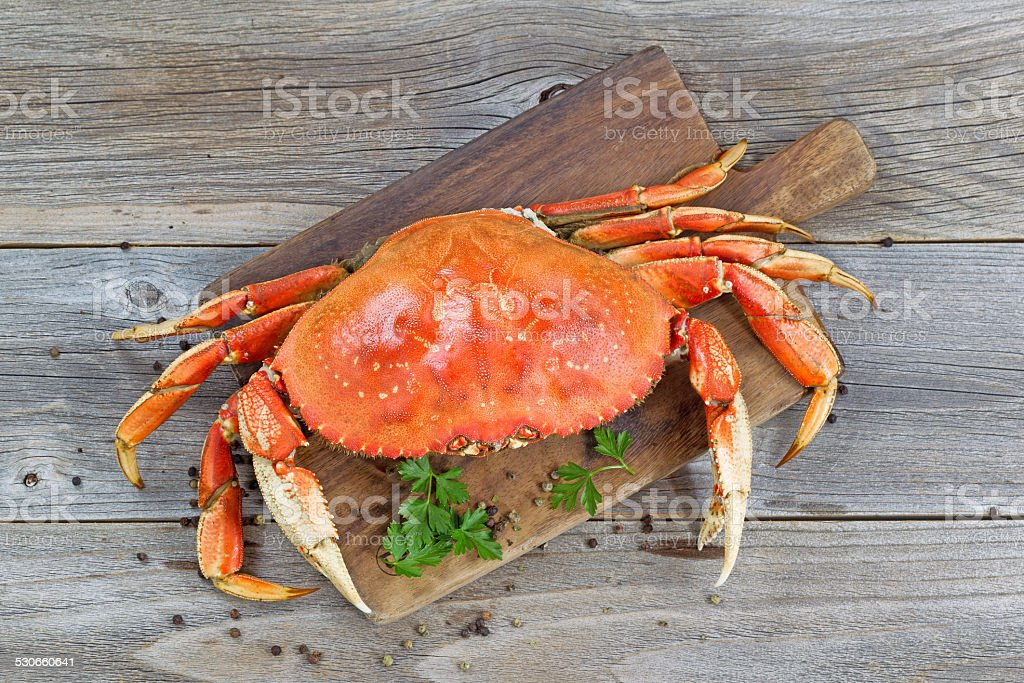 Cooked Crab on Server board stock photo