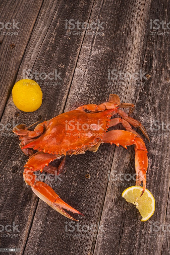 Cooked Crab. royalty-free stock photo