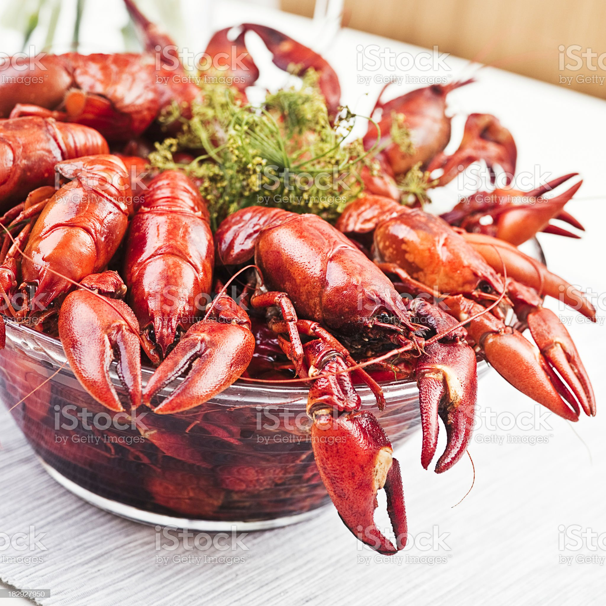 Cooked Crayfish royalty-free stock photo