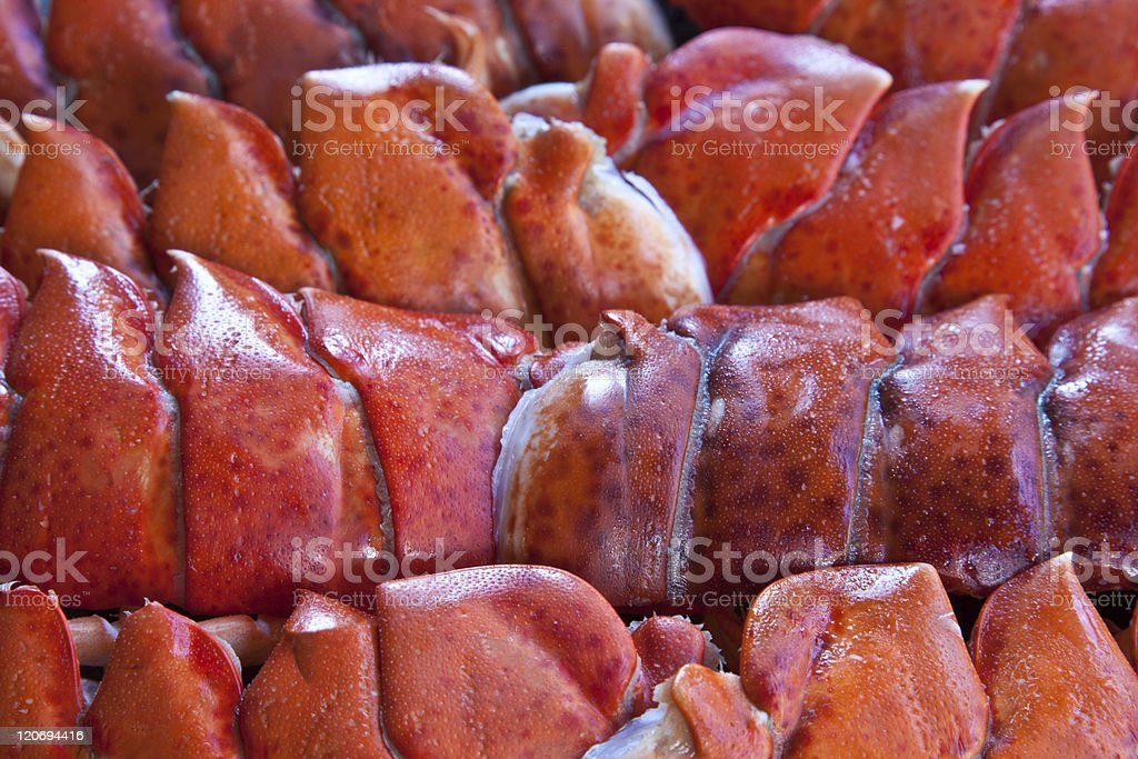 Cooked Lobster Tails stock photo