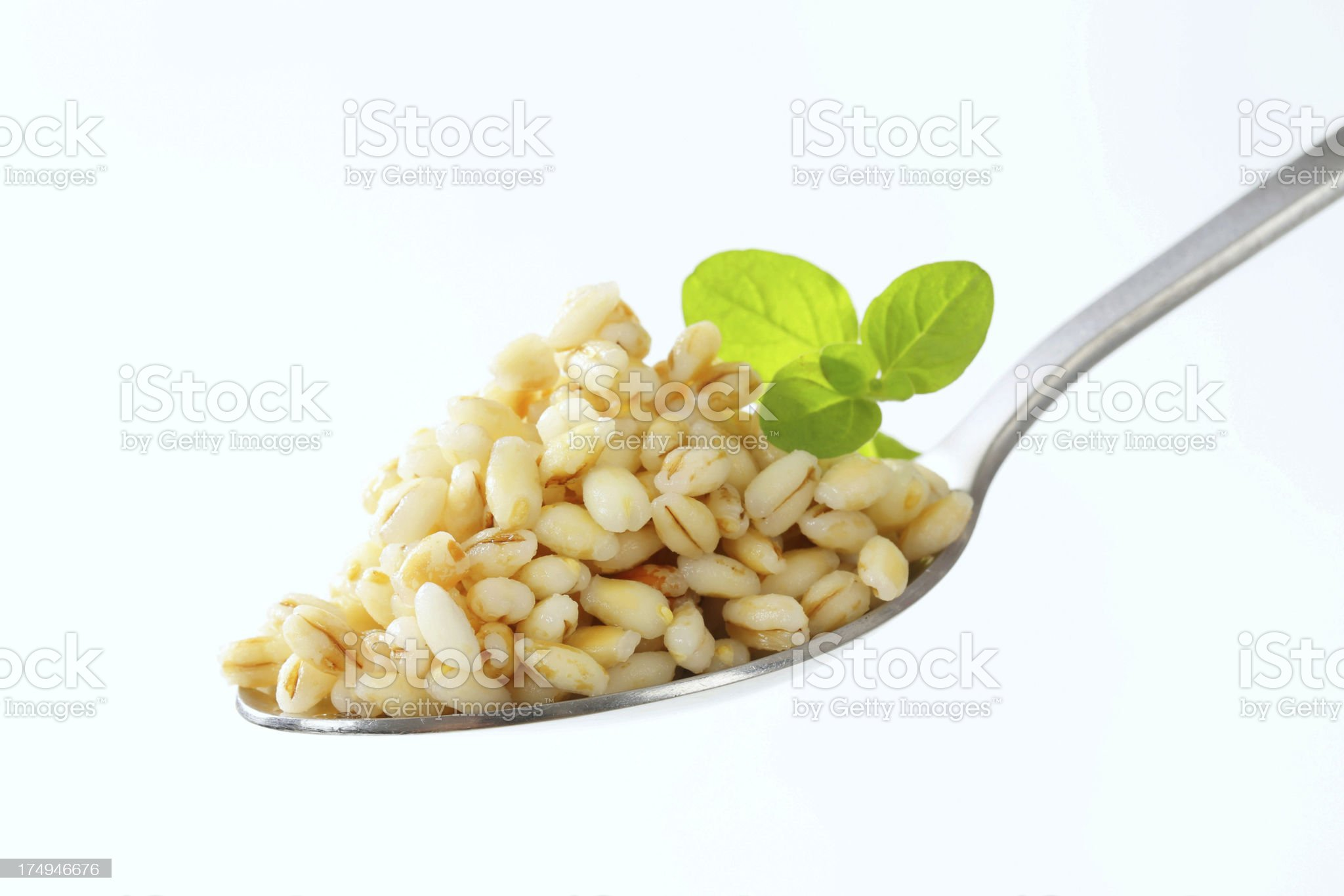 cooked peeled barley on a spoon royalty-free stock photo
