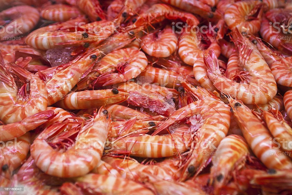 Cooked tiger prawns royalty-free stock photo