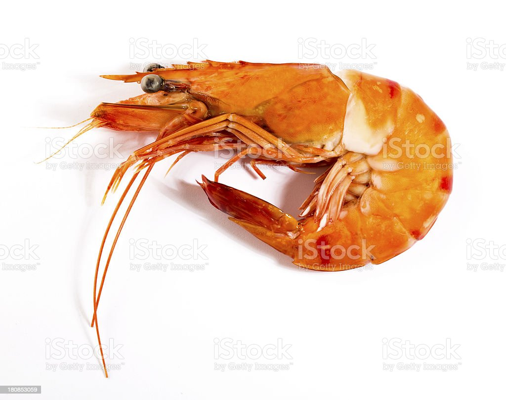 Cooked unshelled tiger shrimp stock photo