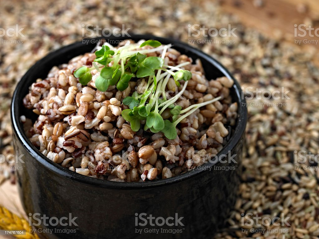 Cooked Whole Grain Mix royalty-free stock photo