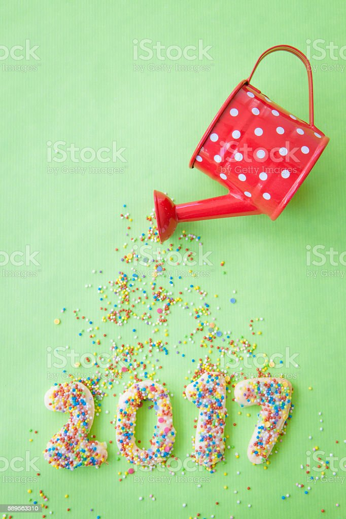 Cookies for the New Year 2017 stock photo