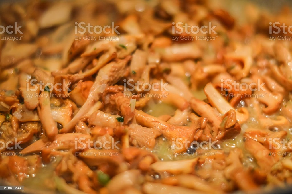 cooking chanterelle mushrooms macro stock photo