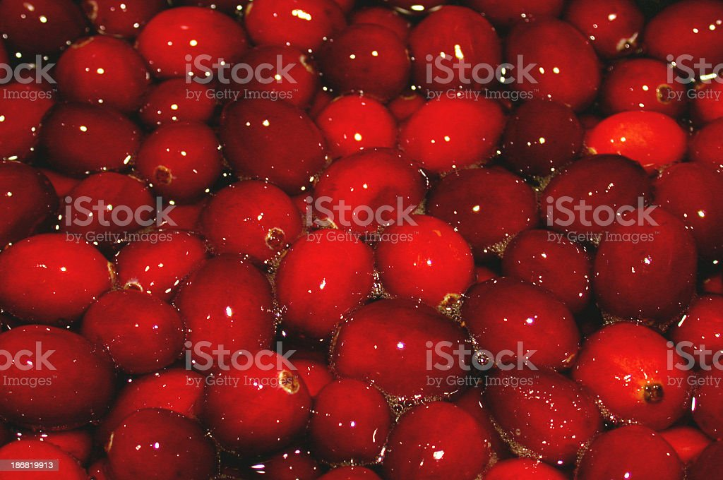 Cooking Cranberries stock photo