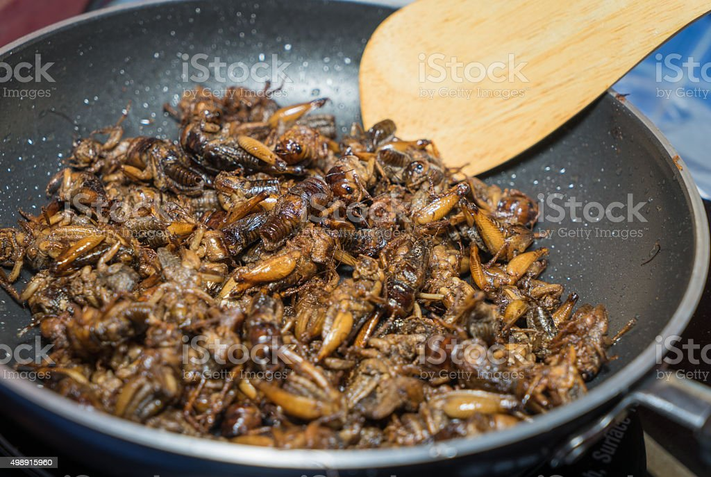 Cooking Fried Insects stock photo