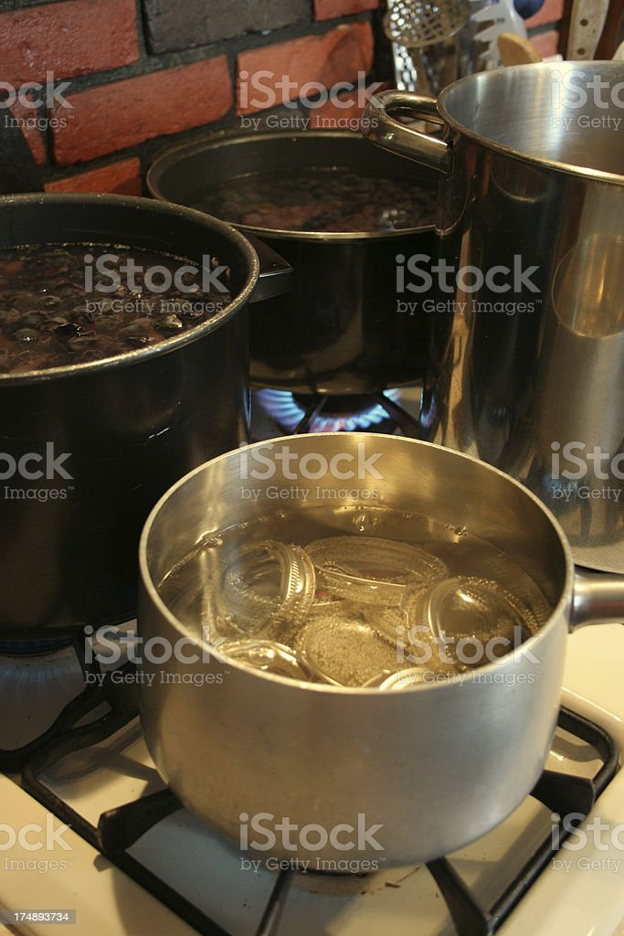 Cooking Grapes royalty-free stock photo