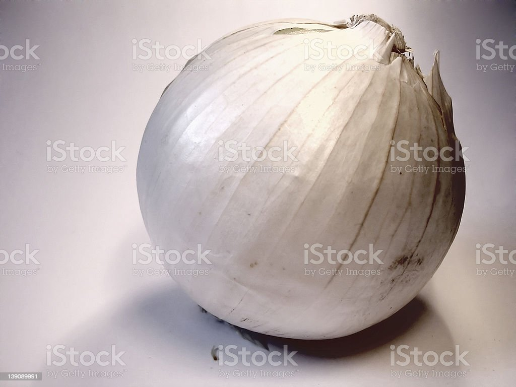 Cooking Onion royalty-free stock photo