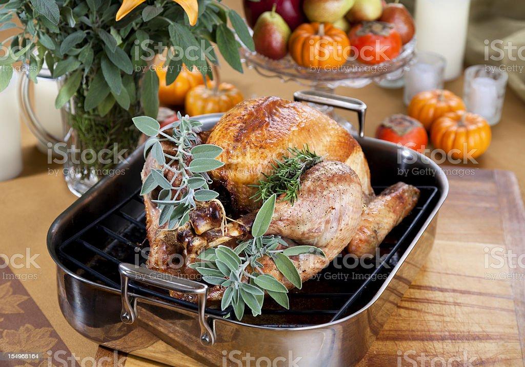Cooking Roast Thanksgiving Turkey Dinner royalty-free stock photo