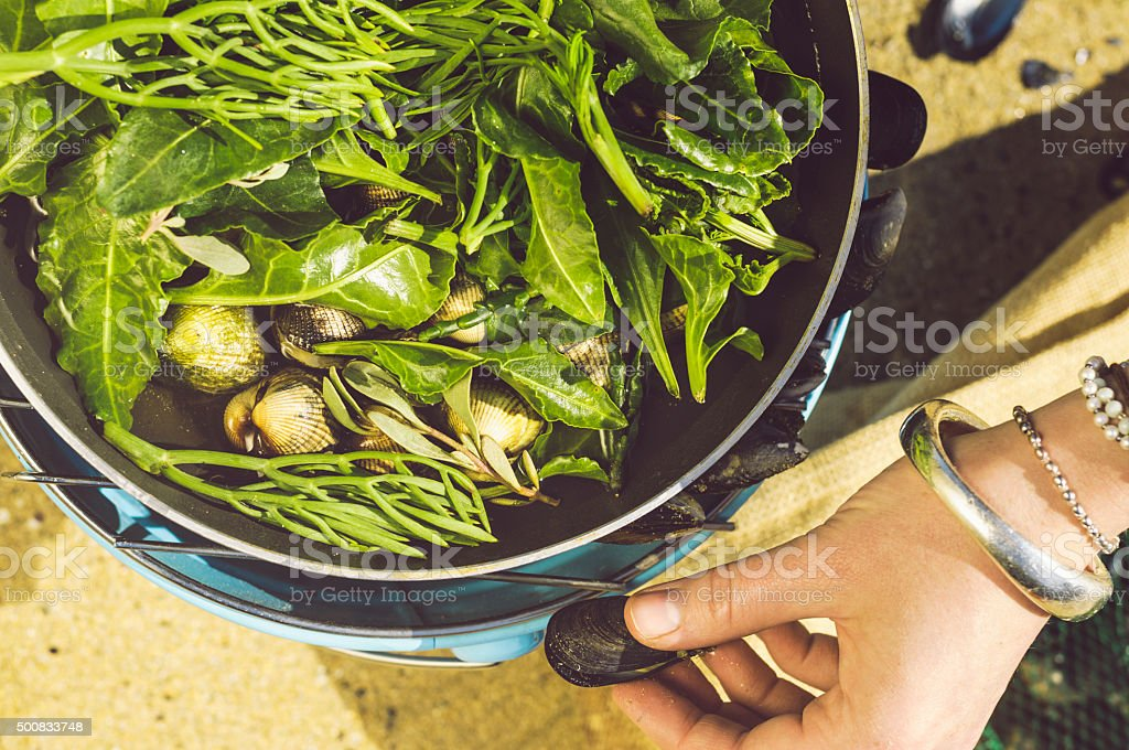Cooking wild cockles on the beach in Cornwall stock photo