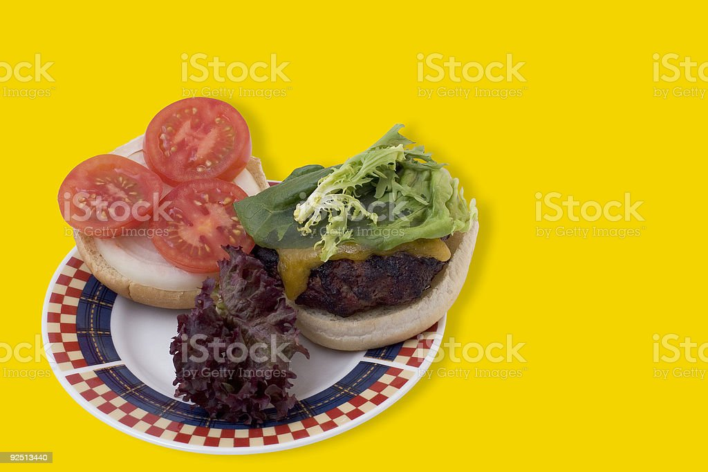 Cookout: Grilled Hamburger on Red, White & Blue Plate royalty-free stock photo