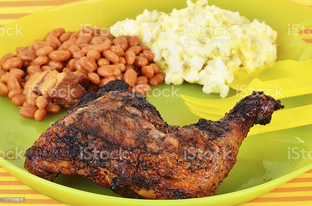 Cookout Plate royalty-free stock photo