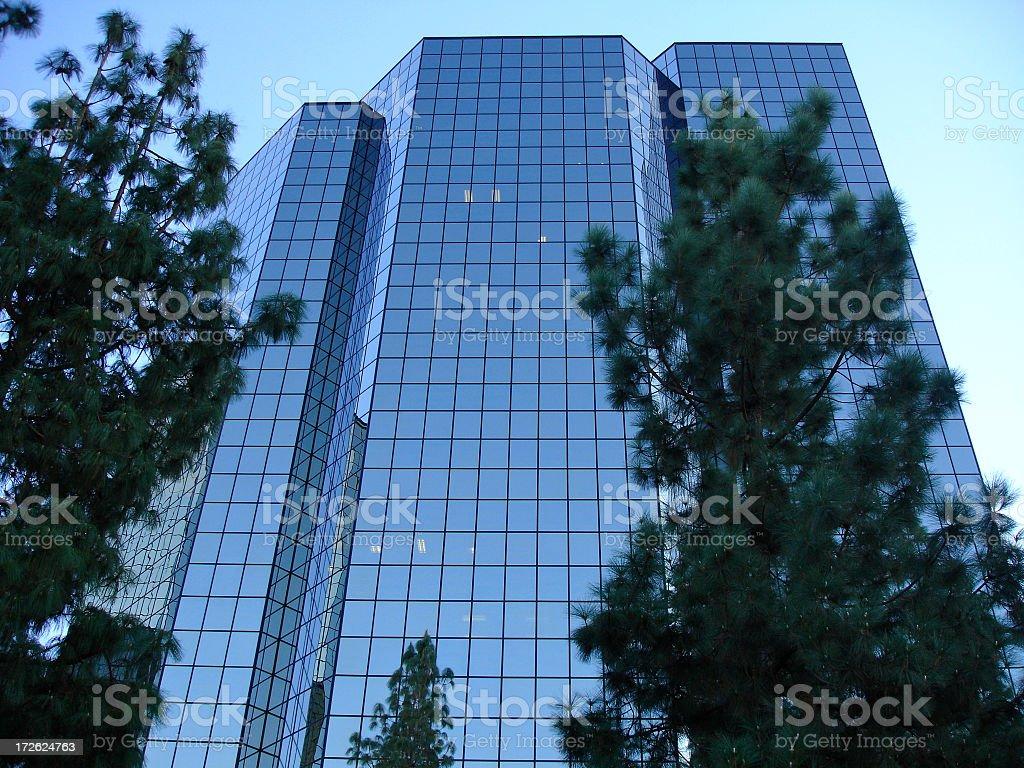 Blue hued buildings in LA