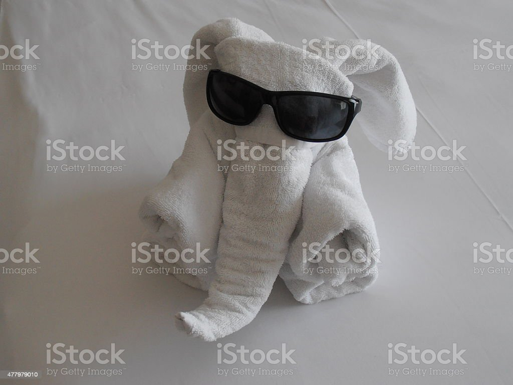 cooler Elefant stock photo