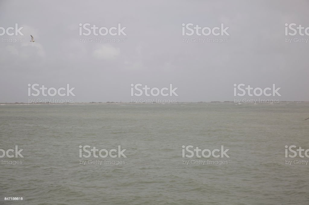 A cool fresh environment stock photo