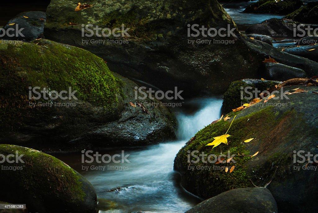 Cool Mountain Stream royalty-free stock photo