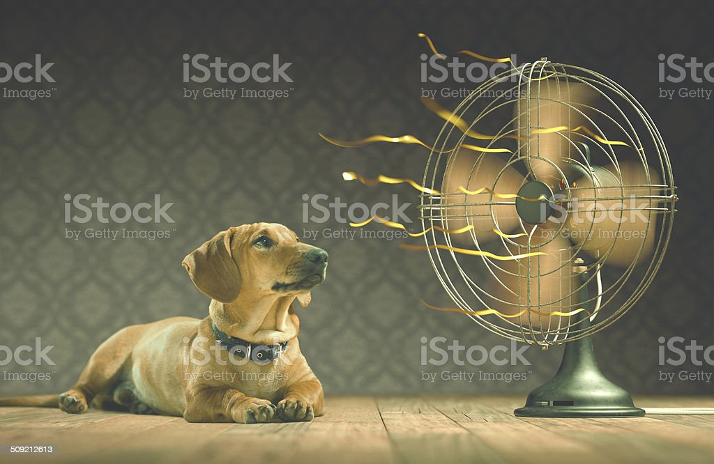 Cool stock photo