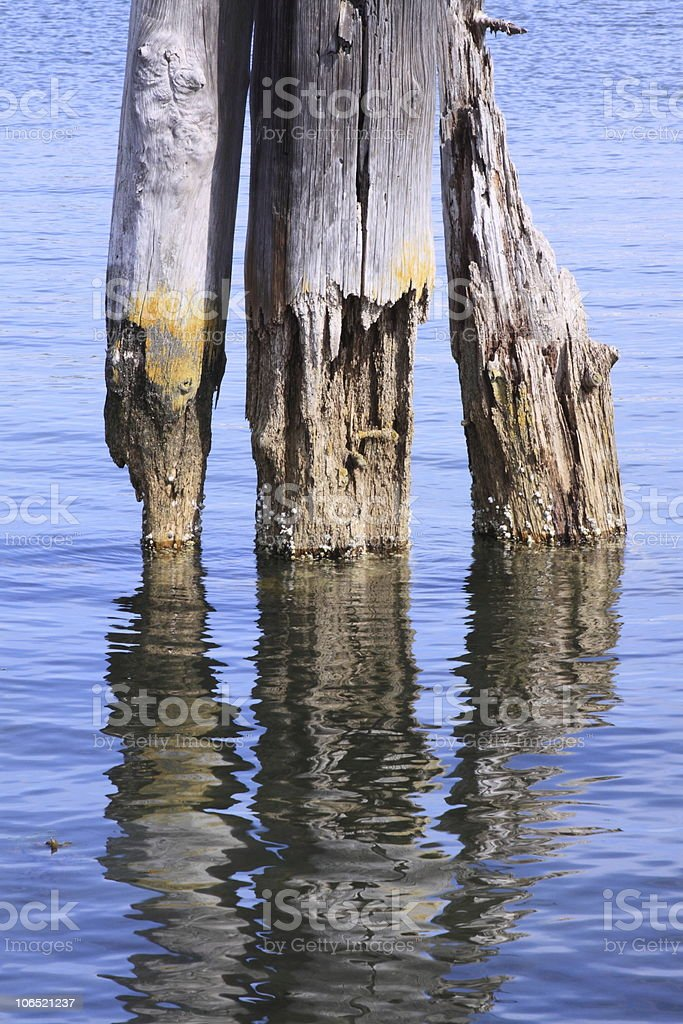 cool reflections royalty-free stock photo