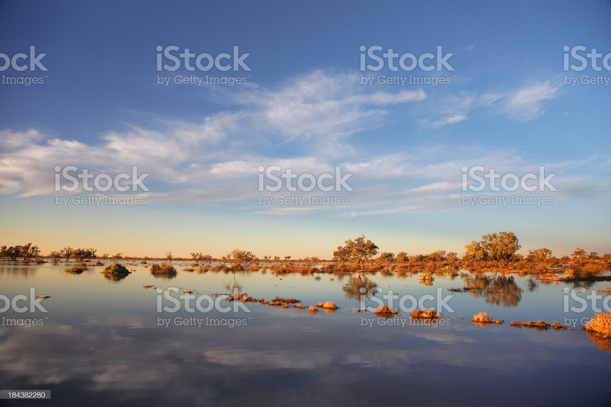 Cooper Creek royalty-free stock photo