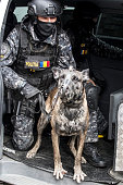 Cop simulating a mission with dog