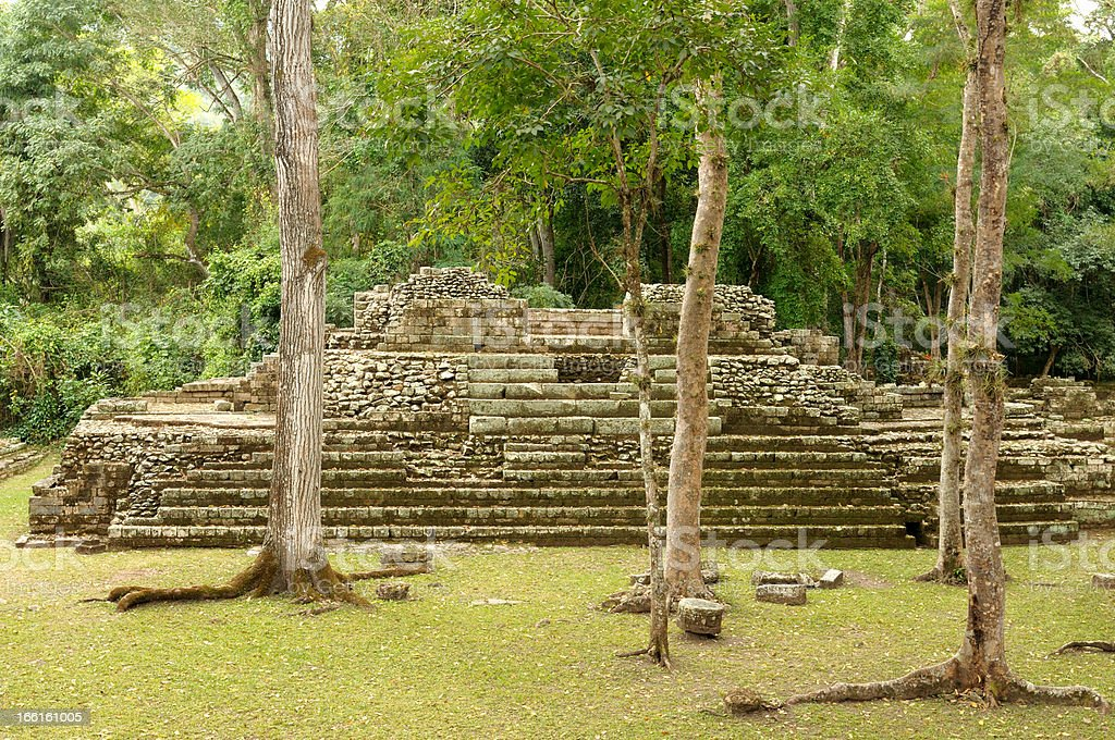 Copan Mayan ruins in Honduras royalty-free stock photo
