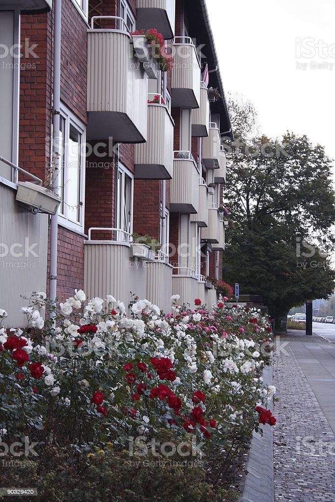 Copenhagen Apartments royalty-free stock photo