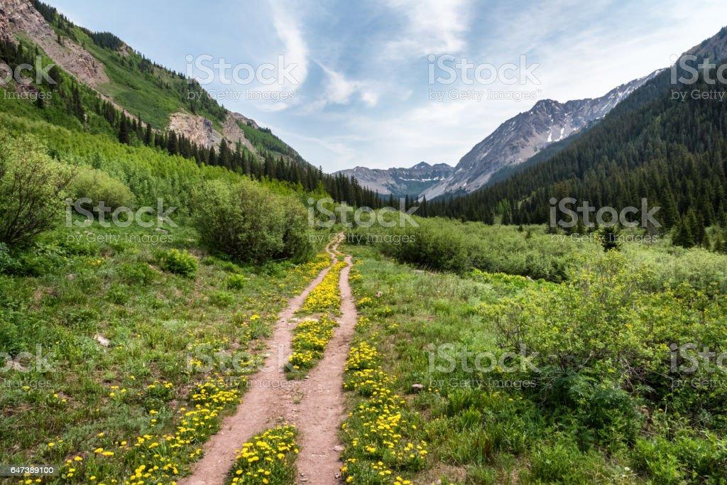 Copper Lake Trail, Crested Butte, Colorado stock photo