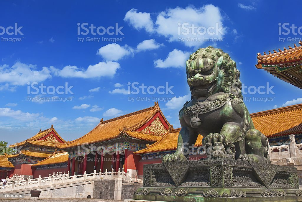 Copper lion royalty-free stock photo