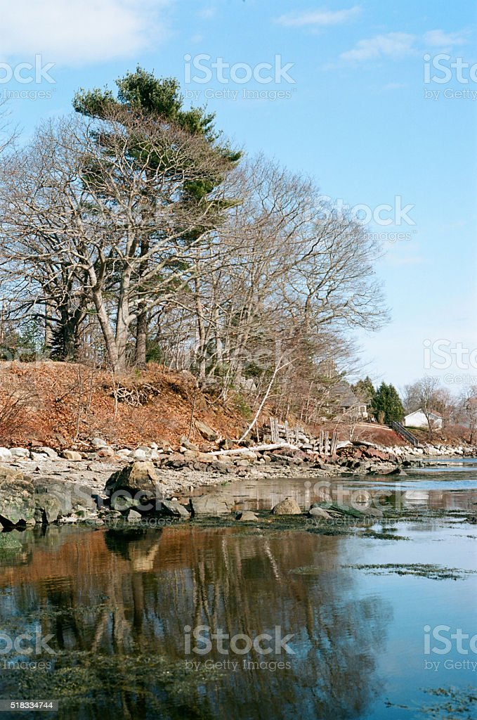 Copse reflected in calm waters on rocky New England coastline stock photo