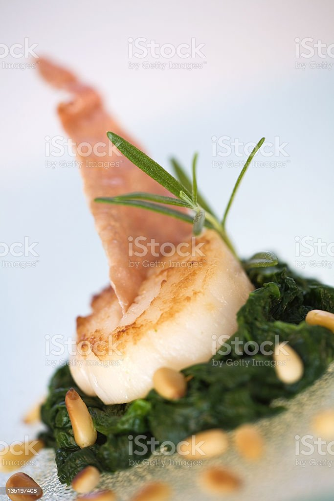 'coquille sint jacques' on a bed of spinach royalty-free stock photo