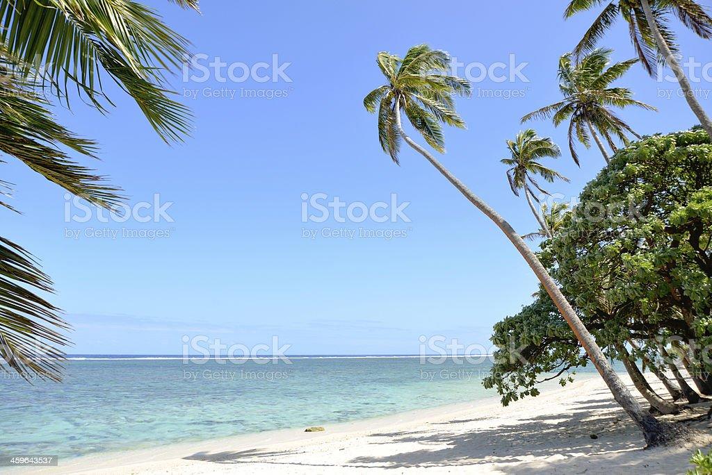 Coral coast, Fiji stock photo