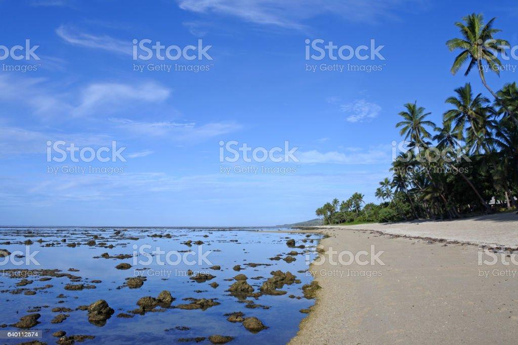 Coral Coast Fiji stock photo