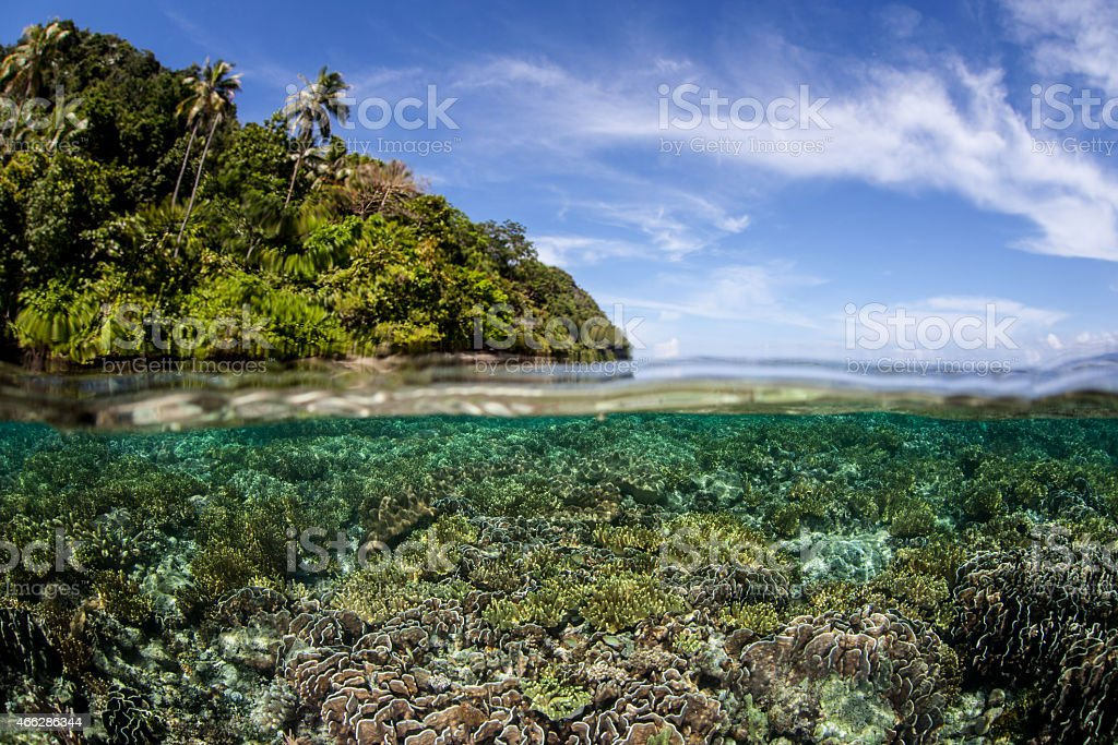 Coral Reef and Equatorial Island stock photo