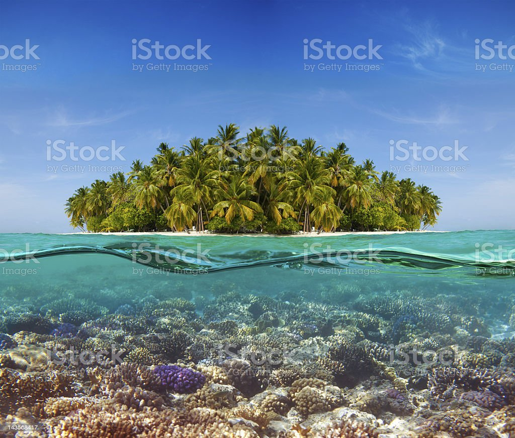 Coral reef and the Island royalty-free stock photo