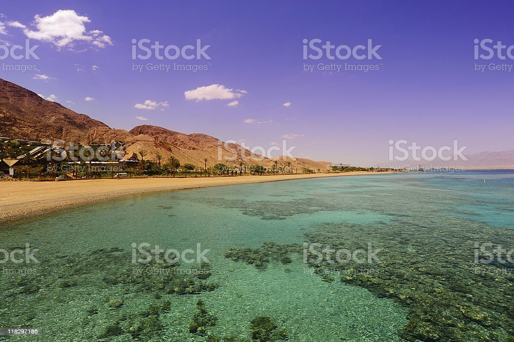 Coral reef as seen through crystal clear waters stock photo