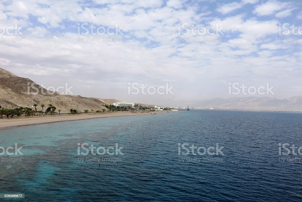 Coral reef in Eilat stock photo