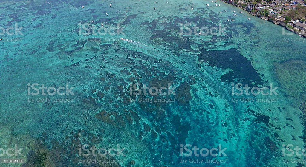 Coral reef in shallow tropical water stock photo