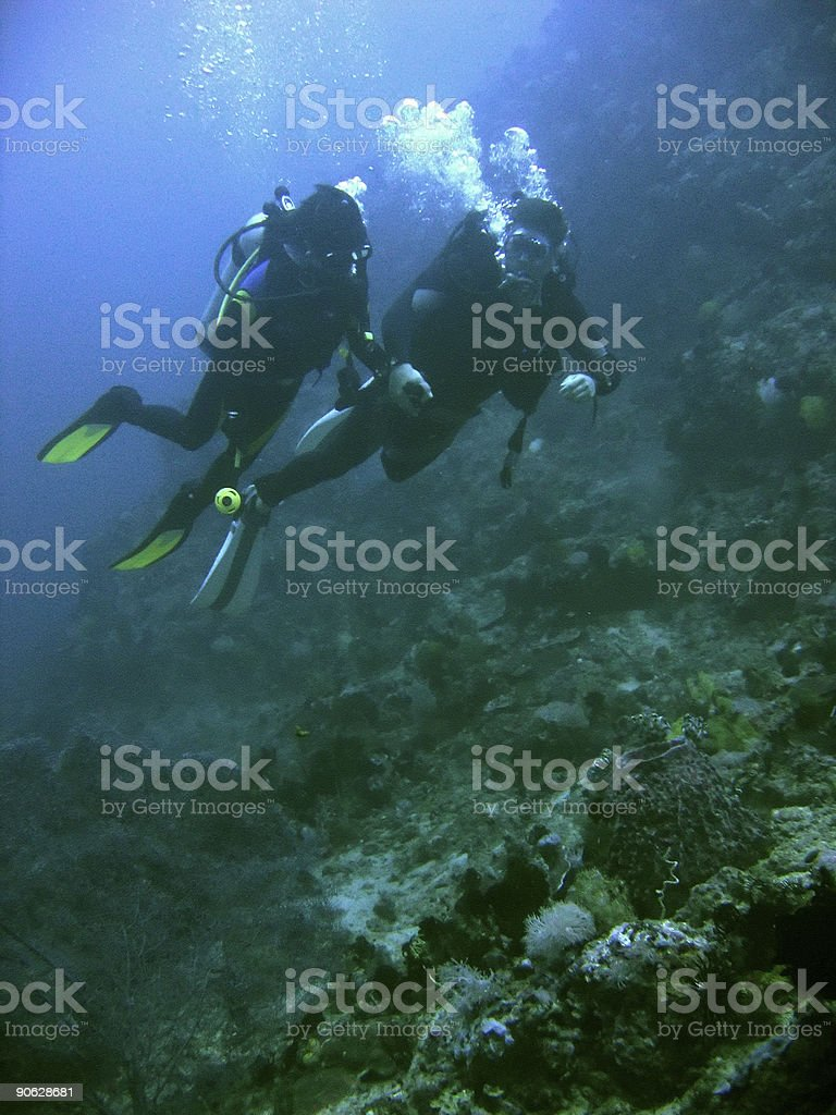 coral reef scuba diving couple philippines stock photo