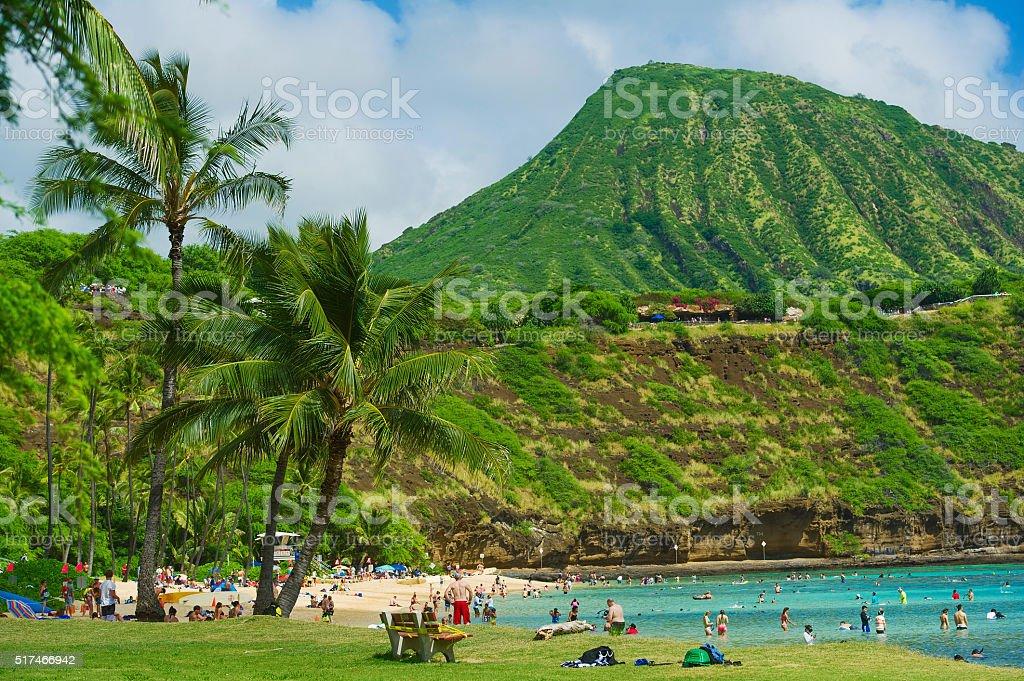 Coral reef snorkeling resort on Hawaii stock photo
