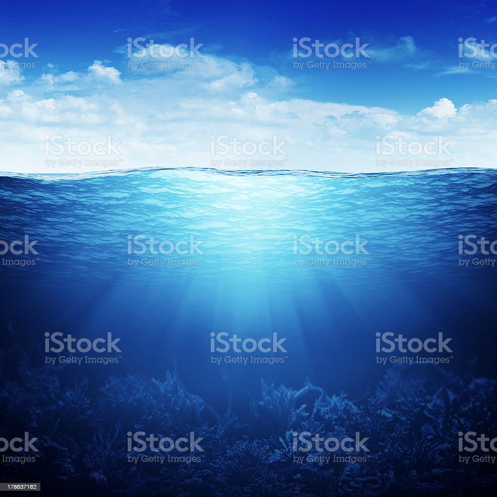coral reef underwater up down waterline stock photo