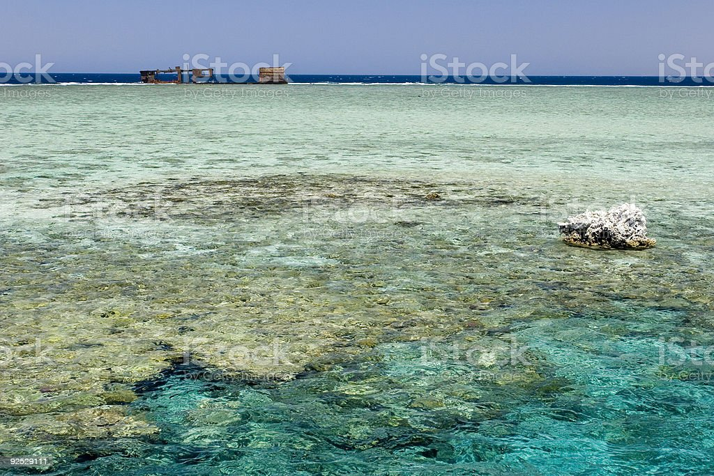 Coral Reefs stock photo
