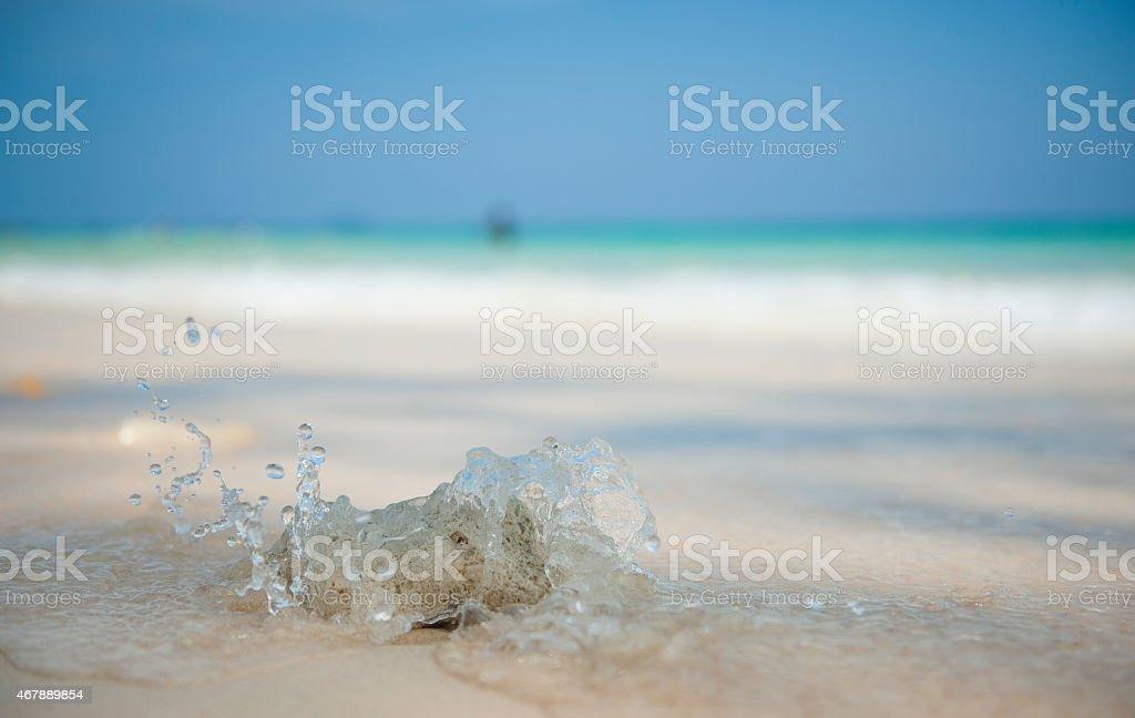 Coral Splash stock photo