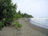 Corcovado national park beach