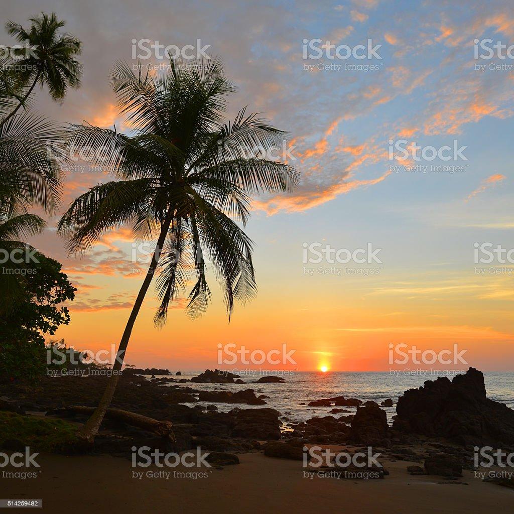 Corcovado Sunset stock photo