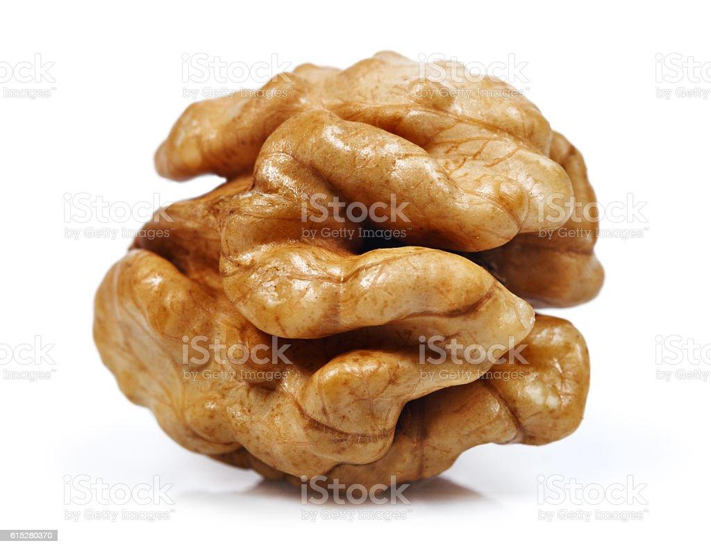 Core nut isolated on white background stock photo