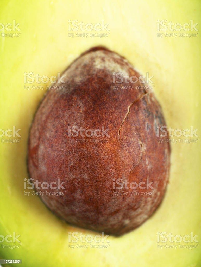 Core of avocado royalty-free stock photo